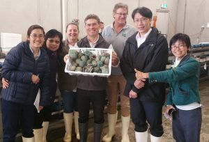 Accompany Taiwanese Food Safety Inspector in Jade Tiger Abalone Indented Head Victoria Audit